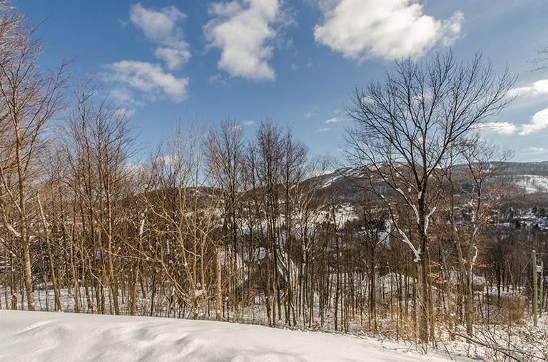 Mont Bertier - Terrain B5 - Bromont immobilier